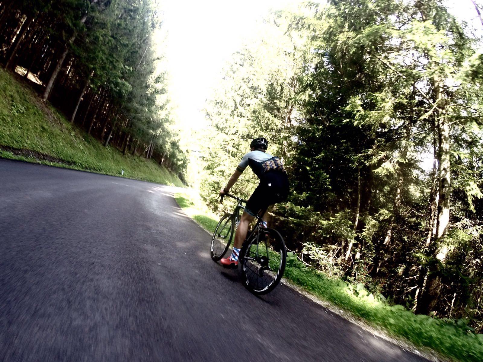 Ausfahrt mit dem Rennrad im südlichen Niederösterreich.