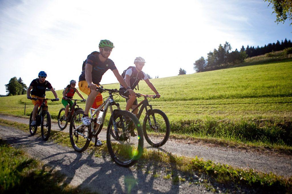 Eine Tour bei Sonnenuntergang mit den Mountainbikeguides in der Buckligen Welt.
